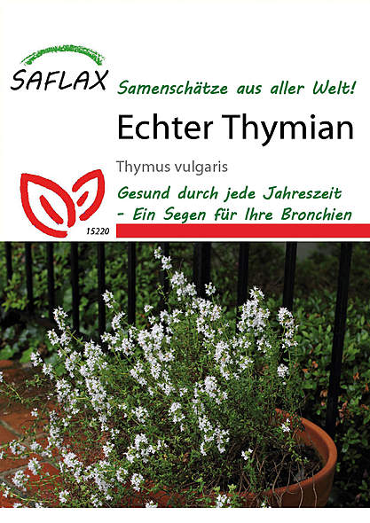 Mein Heilpflanzengarten - Echter Thymian