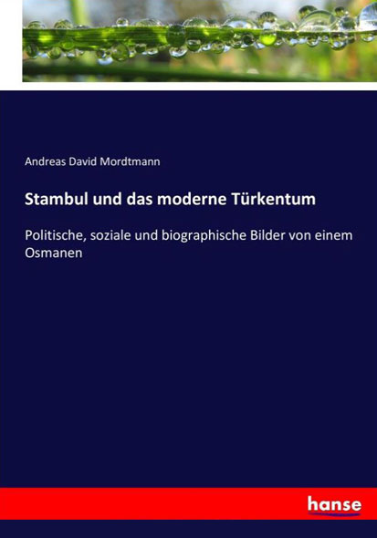 Stambul und das moderne Türkentum - Mängelartikel