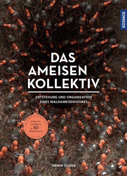 Das Ameisenkollektiv