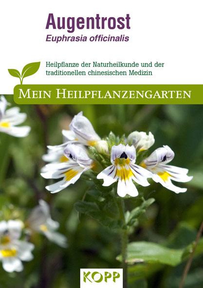 Augentrost - Mein Heilpflanzengarten