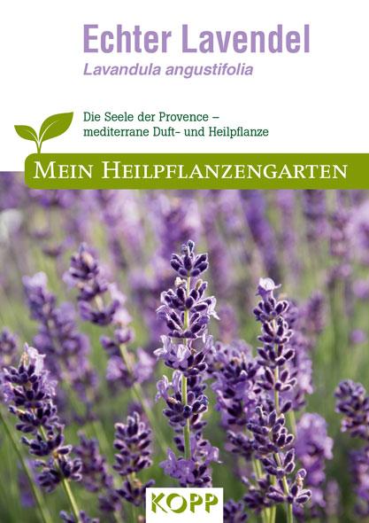 Echter Lavendel - Mein Heilpflanzengarten