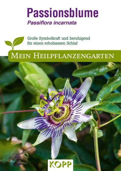 Passionsblume - Mein Heilpflanzengarten