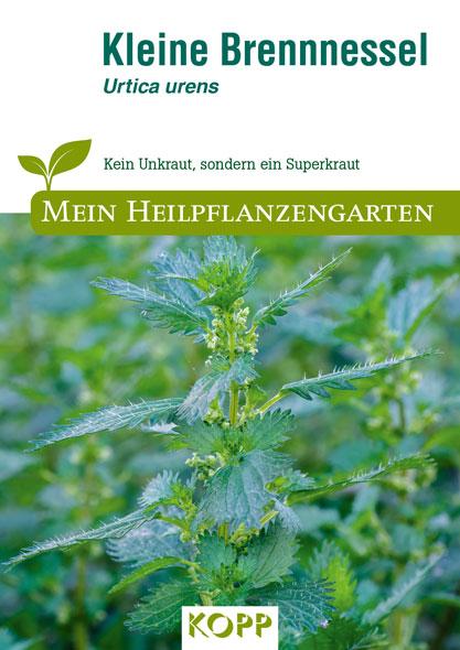 Kleine Brennnessel - Mein Heilpflanzengarten