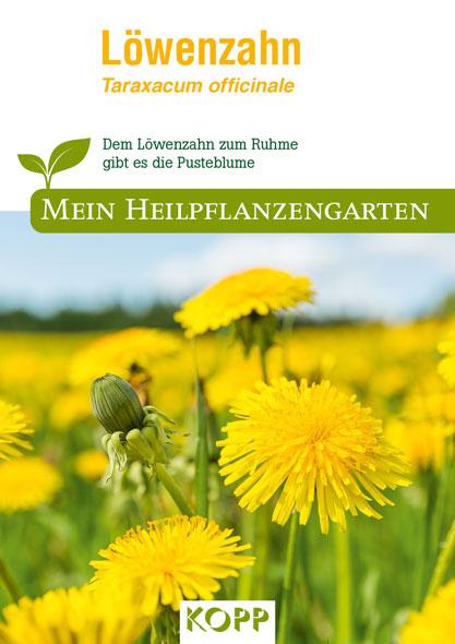 Löwenzahn - Mein Heilpflanzengarten