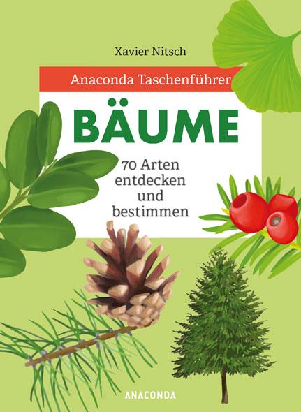 Bäume - 70 Arten entdecken und bestimmen
