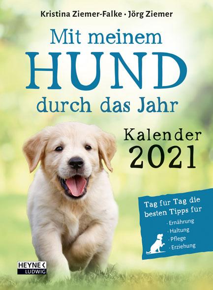 Mit meinem Hund durch das Jahr 2021
