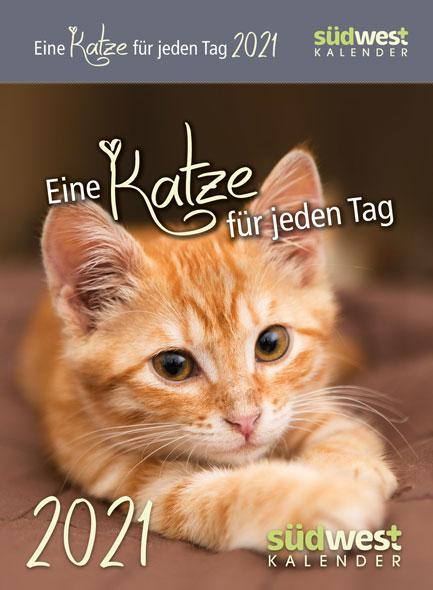 Eine Katze für jeden Tag 2021