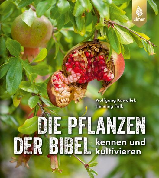 Die Pflanzen der Bibel kennen und kultivieren