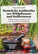 Natürliche Antibiotika aus Wildpflanzen und Heilkräutern_small