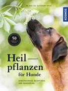 Heilpflanzen für Hunde_small