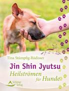 Jin Shin Jyutsu_small