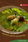 Köstliches von Waldbäumen_small