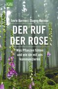 Der Ruf der Rose_small