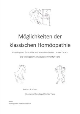 Möglichkeiten klassischer Homöopathie