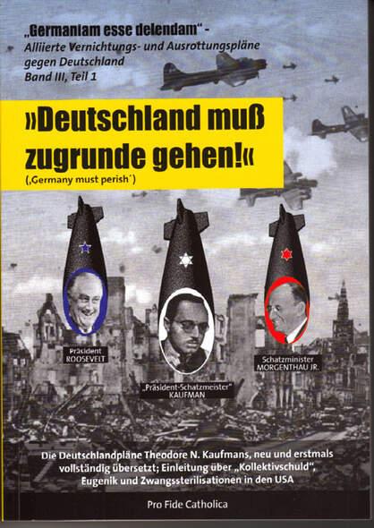 Alliierte Vernichtungs- und Ausrottungspläne gegen Deutschland Band 3 Teil 1